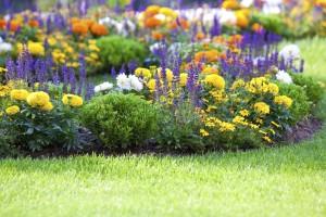 Διαμορφωση-κηπου-αθηνα